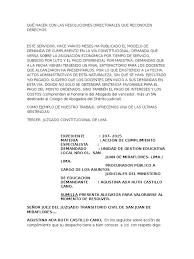 AGUSTINA CASTILLO CANO - ALEGATOS ACCION DE CUMPLIMIENTO.docx | Caso de ley  | Ley procesal
