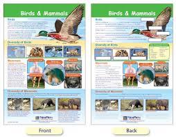 W94 4710 Mammals Birds Bulletin Board Chart
