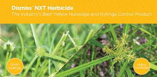 Nutsedge Herbicides Dismiss Nxt Herbicide
