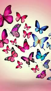 Butterfly wallpaper, Butterfly drawing ...