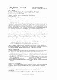 Profile Sample For Resume Mock Email Template