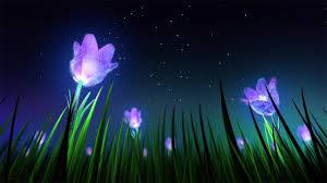 Relaxing Sleep Music and Night Nature Sounds: Soft Crickets, Beautiful  Piano, Fall Asleep Fast - YouTu…   Relaxing music sleep, Deep sleep music,  How to fall asleep