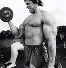 Arnold Exercise Chart Arnold Schwarzeneggers Biceps Training Routine Body