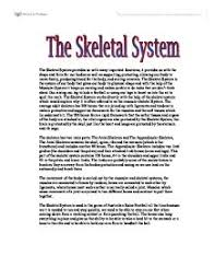 the skeletal system a level physical education sport coaching  page 1 zoom in