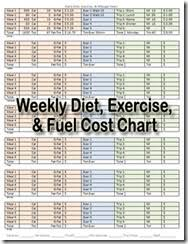 Weekly Calorie Exercise Fuel Chart Fire Up Today