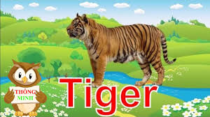 Bé học tiếng anh qua hình ảnh động vật | em tập nói tên các con vật | Dạy  tiếng anh cho trẻ em - YouTube