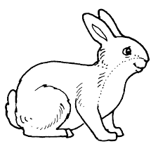 Rabbit #7 (Animals) – Printable coloring pages