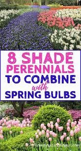 Perennial Pleasures Landscape Design 8 Beautiful Shade Perennials To Combine With Spring Bulbs