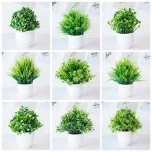 купите <b>bonsai</b> с бесплатной доставкой на АлиЭкспресс version