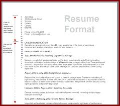 Blue Resume Template Personal Profile Sample Co Microsoft Word ...