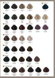 Alfaparf Milano Evolution Of The Color Chart Alfaparf Milano Usa Evolution Of The Color Color Chart In