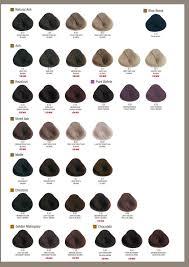 Alfaparf Milano Usa Evolution Of The Color Color Chart In