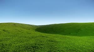 grass field. Add Media Report RSS Grass Field - By The Grim (view Original) G