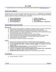 Resume Professional Summary Examples Resume Professional Summary Examples FutureofinfoMarketingus 27