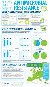 antibiotic resistance essay antibiotic resistance origins and  antimicrobial and antibiotic resistance the important facts what is antimicrobial resistance