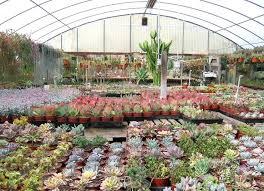 garden centres garden nursery near my location