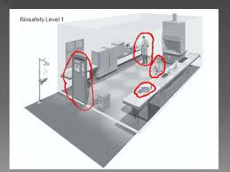 Biosafety Level 3 Laboratory Design Discuss The Major Characteristics Of The Four Biosafety