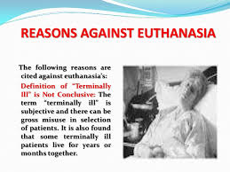 opinion essay euthanasia opinion essay