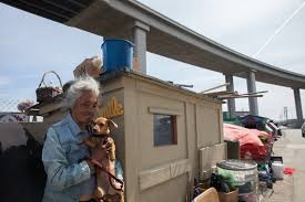 tiny houses for homeless. Tiny House. Sheila, Holding Bella, Has Been Homeless For 35 Years. Originally From Yakima, Washington, She Staying With Her Husband Oscar On Wood Houses 0