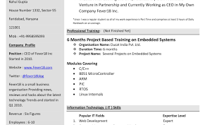 Prepare Professional Resume Business Invoice Template