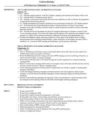 Beautiful Sample Resume For Sales Executive Doc Images