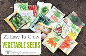 23 easiest vegetables to grow from seed