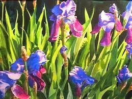 painting the purple iris
