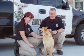 Animal Control | Seabrook, TX - Official Website