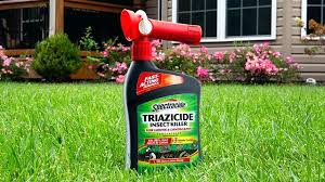 bug a salt lawn and garden insect for lawns and landscapes concentrate bug a salt