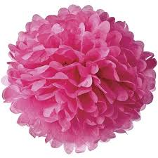 Tissue Paper Flower Ideas Tissue Paper Pom Pom 10 Inch Fuchsia Pink For Baby Showers Nurseries And Parties Hanging Paper Flower Decorations