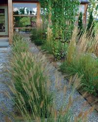 Small Picture Designing with Grasses Fine Gardening