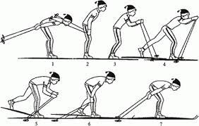 Ознакомление и разучивание техники одношажного хода