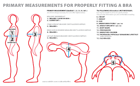 How To Determine Bra Size Correct Bra Sizing Sewing Bras
