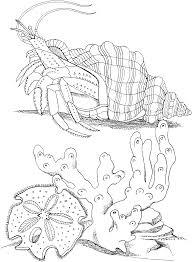 Crabe 25 Animaux Coloriages Imprimer