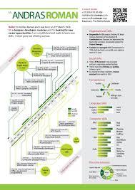 Top Infographic Resume Andras Roman Visual Resume 2012