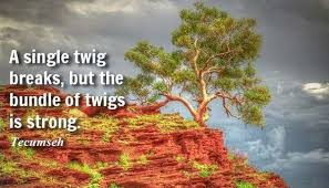 Tecumseh Quotes Fascinating 48 Inspirational Teamwork Quotes And Sayings With Images Teamwork