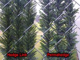 Wonderful Chain Link Fence Slats Hedge Vs Permahedge Throughout Decorating