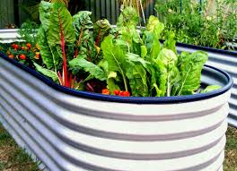 free raised bed vegetable garden plans joeys place my water tank beds the