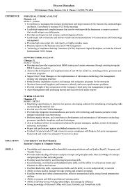 It Risk Analyst Resume Samples Velvet Jobs
