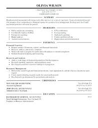 Accounting Resume Examples – Lespa