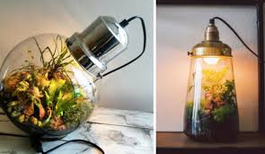 these sci fi lamps have self sustaining ecosystems living inside them