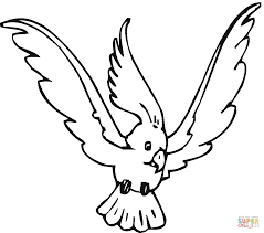 cockatoo 10 coloring page parrots coloring pages free coloring pages on parrot outline template