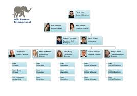 Simple Org Chart Software Org Chart Examples From Orgchartpro Com