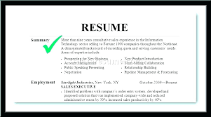 Resume Professional Summary Examples New Resume Summary Examples For Freshers Resume Sample Summary Write