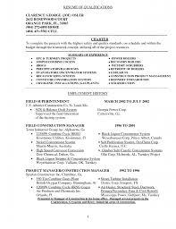 Professional Resume Summary Examples Resume Entry Level Objective