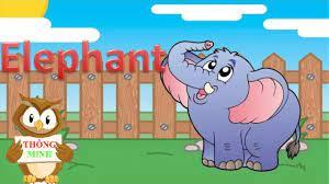 Bé học tiếng anh qua hình ảnh con vật   tập nói tên của các loài động vật   dạy  tiếng anh cho trẻ em - YouTube