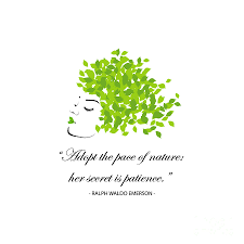 Quotes For Nature Adopt The Pace Of Nature Her Secret Is Patience Happy Earth Day By Shawlin