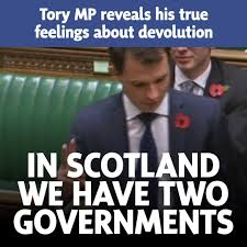 Image result for andrew bowie tory