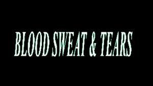 Ava Max - <b>Blood</b>, <b>Sweat</b> & <b>Tears</b> [Official Lyric Video] - YouTube