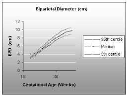 Biparietal Diameter Bpd